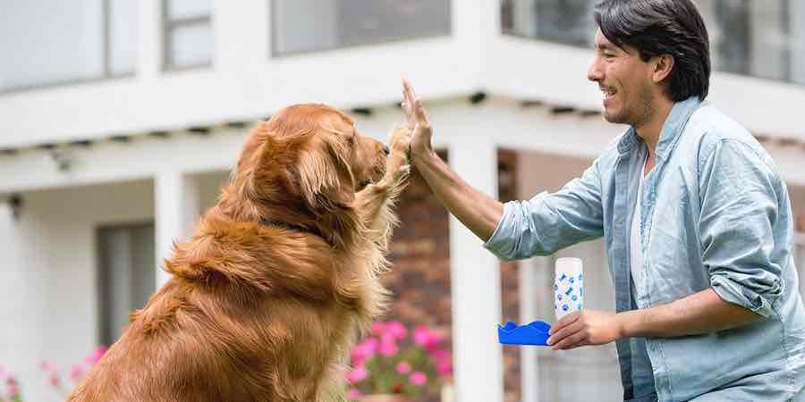 Botellas de perros. Botellas de agua para perros. Perro de agua bebe, botella para perros